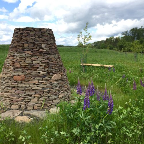 Cairn with lupins