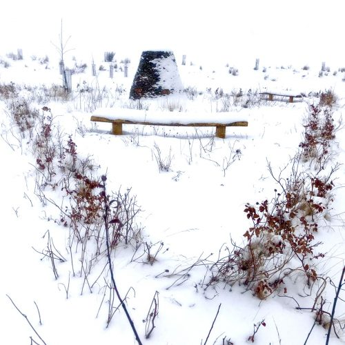natural burial ground snowy